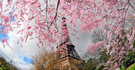 torre eiffel primavera