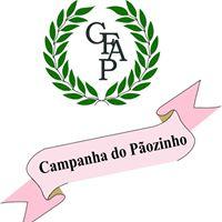 gfap2